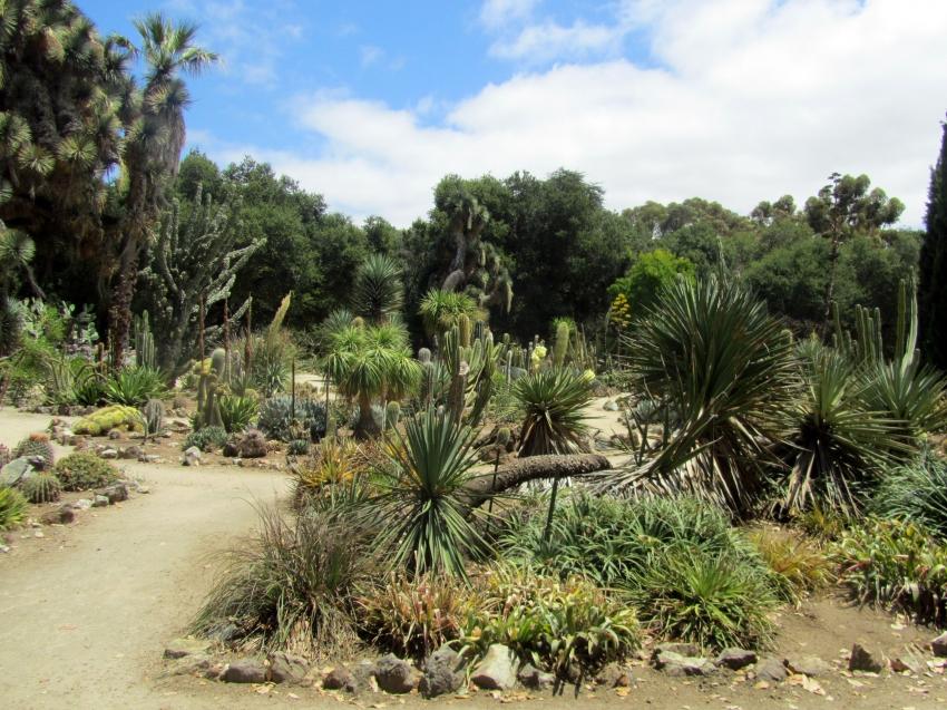 Restaurants Near The Desert Botanical Garden